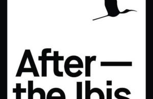 Irish Band Of The Week – After The Ibis