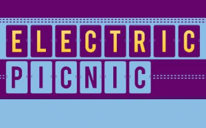 electric-picnic-line-up-2013