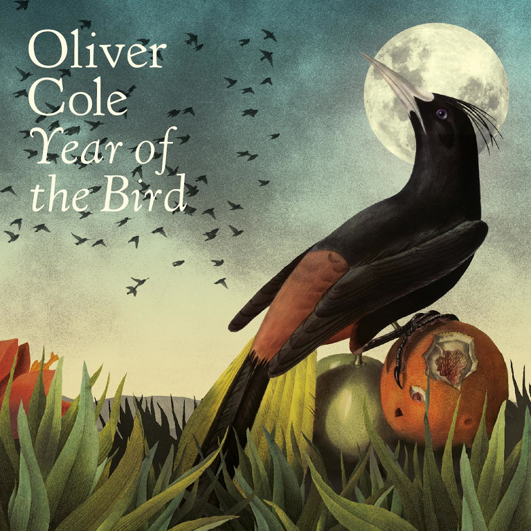 Oliver Cole Year of the Bird Review