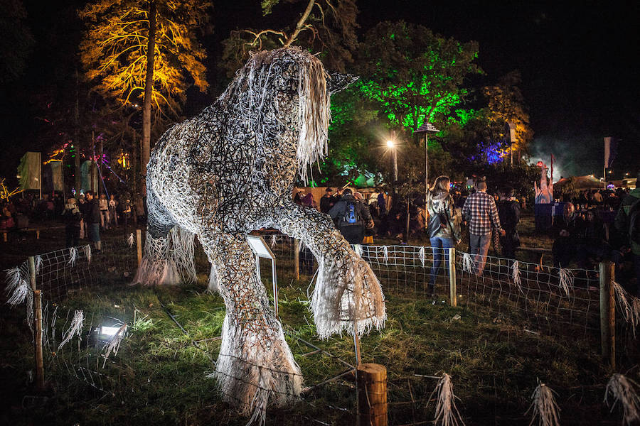 Electric Picnic 2015 Day Two Review