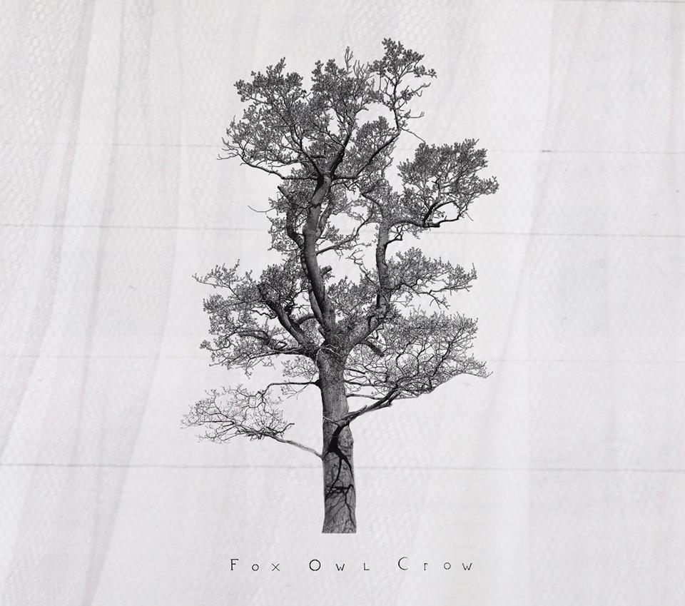 Fox Owl Crow Debut Album Review