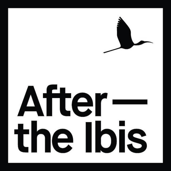 Irish Band Of The Week - After The Ibis